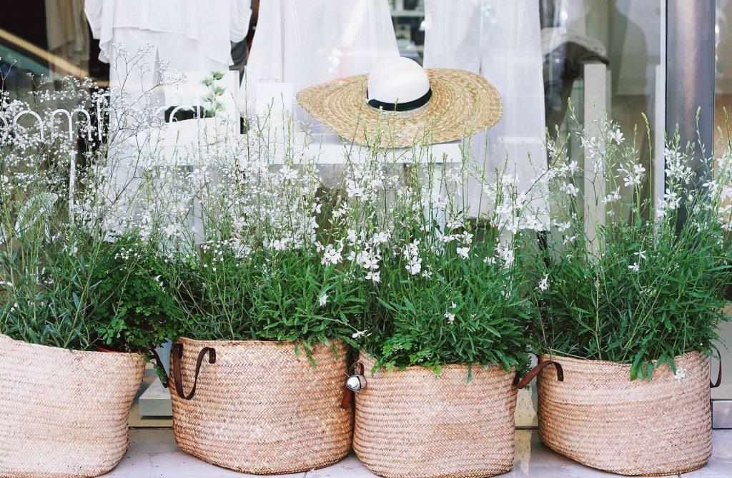 Stanowiska dla roślin doniczkowych - Lovegarden